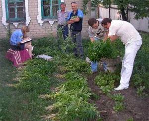 Максимальный срок, который ей грозит - 7 лет лишения свободы. Фото: donetsk.comments.ua.