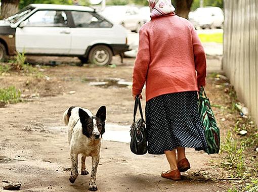 Местные жители давно знакомы с Джеком. Фото Елены Ибрагимовой.