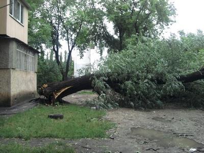 Непогода в Одессе натворила бед. Фото автора
