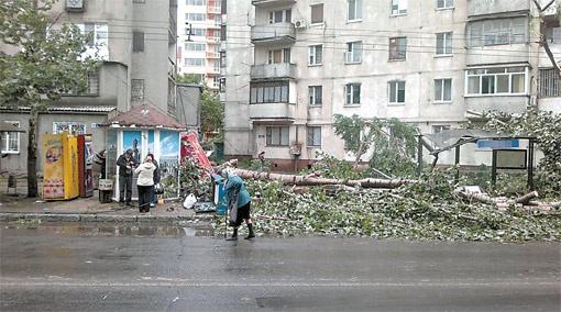 По самым скромным подсчетам, в Одессе за два дня стихия повалила более пятисот деревьев, из-за чего несколько районов остались без электричества. Фото с сайта Forum.od.ua