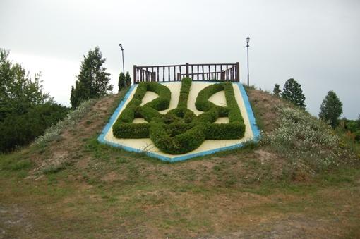 На герб Украины понадобилось 250 туй.