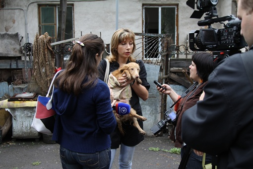 Виктория Васильева, директор приюта для бродячих собак ПИФ. Фото: Павел Колесник.