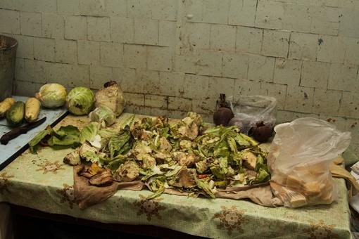 Сотрудники вивария собирают остатки еды с мусорников, для того, чтоб накормить хвостатых. Фото: Павел Колесник.