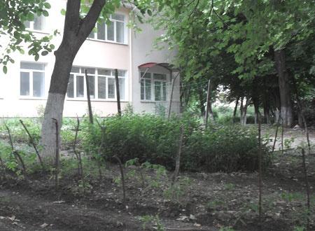 Фото nr2.ru.