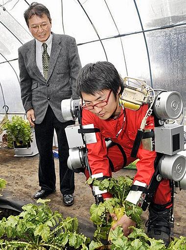 Студент университета Гохей Ямомото легко дергает редьку, которая в Японии достигает размеров крупной российской репки. Профессор Тояма (слева) подчеркивает, что