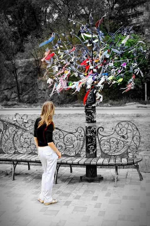 Те, кто пока одинок, у волшебного дерева загадывают романтические желания. Фото Константина КАЩЕНКО