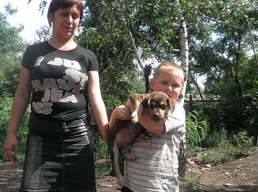 Наталья Самойлова с сыном Валерой, узнав, что пережил Тобик, пообещали любить щенка еще больше. Фото приюта для бродячих собак