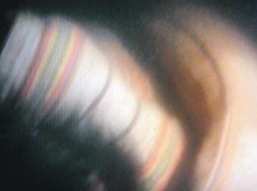 Водолаз плывет дальше, продолжает разбивать стекла в других каютах.  В объектив попадают большой цветастый ковер, свернутый матрас.