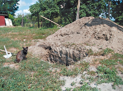 Кот Халва неотлучно сидит возле могилы, вырытой для отца Лазаря братией: видимо, хочет проводить любимого хозяина в последний путь.