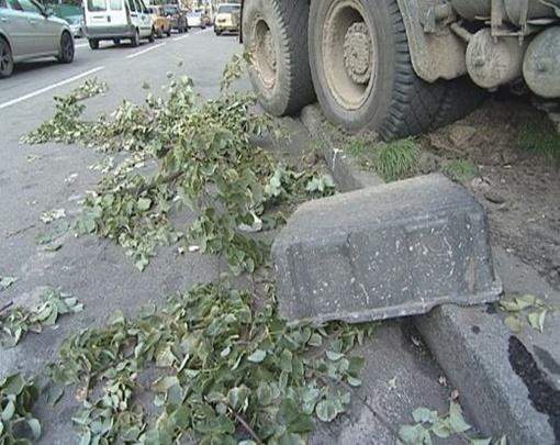 Грузовик вылетел на тротуар и повалил дерево. Фото с сайта magnolia-tv.com.