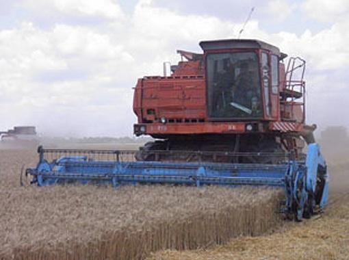В этом году уже собрали более двух миллионов тонн зерна.