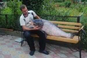 Почти русалка. Фото с сайта narodne-slovo.te.ua