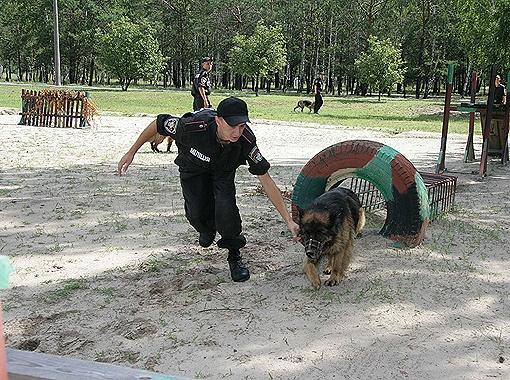 Обязательные тренировки проводят три раза в неделю. Фото предоставлено пресс-службой Внутренних войск МВД Украины.