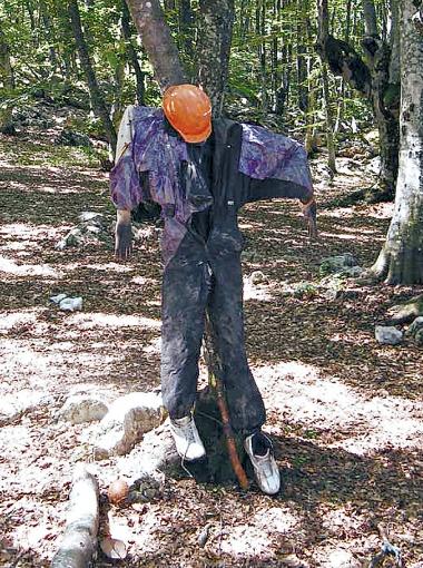 В диком лесу можно собрать полную экипировку - от кроссовок до каски.