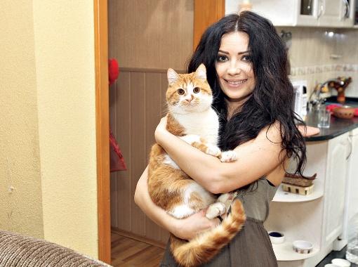 Лама: - Этот рыжий кот - мое настоящее солнышко!