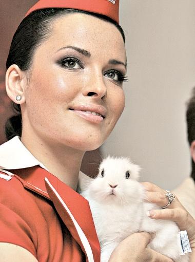 Даша Астафьева уверена: кролик лучший друг трудоголика.