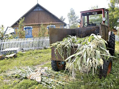 Дом в селе Молочки Житомирской области, где Пукач под именем Петр тайно прожил свой последний год на воле. Фото Максима ЛЮКОВА.