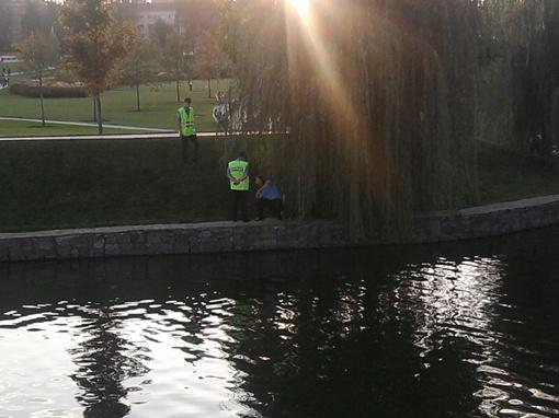 Это парочка была замечена правоохранителями под ивой. Молодые люди, лежа на траве, обнимались и целовались у всех на виду.