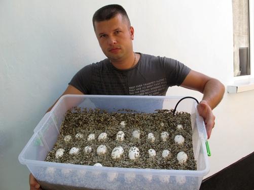 Виктор Жиленко в ожидании зубастиков. Фото предоставлено крокодиляриумом.