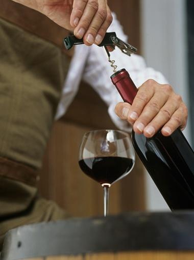 Праздники виноделия отмечают по всей Европе.