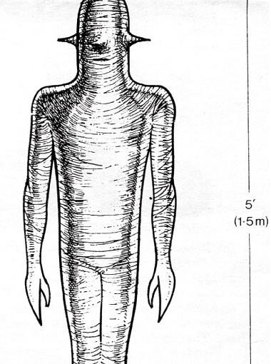 Такое вот существо ростом примерно 150 сантиметров выплыло из НЛО. Хиксон полагает, что его непосредственные похитители были биороботами.