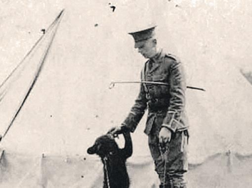 Медведицу Виннипег военные привезли в Лондон из Канады.