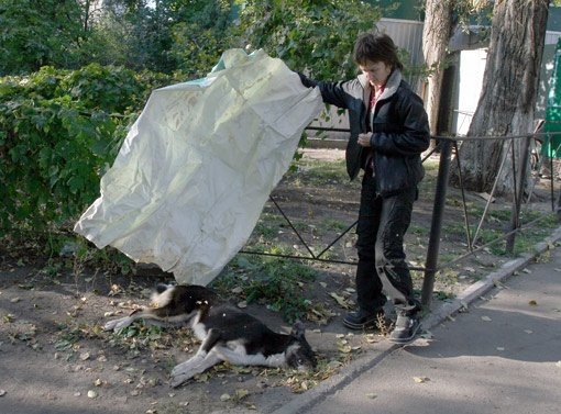 Лариса Гнащук, волонтер по защите животных при Киевской горадминистрации, показывает очередную жертву догхантеров.