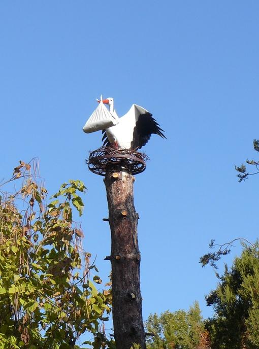 Желающие родить ребенка, смогут дотронуться до ствола дерева, на котором сидит новый житель парка, и загадать заветное желание.