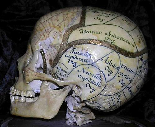 В эпоху Романтизма череп можно было увидеть не только в медицинском кабинете, но и на столе поэта Фото: из архива С. Григоряна