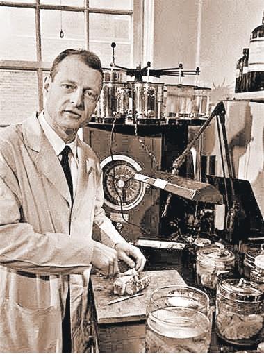 Томас Харви, похититель мозга Эйнштейна, проводит вскрытие великого физика в 1955 году.