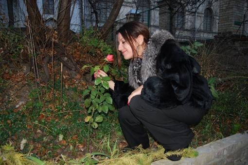 Цветок распустился среди декабря! Фото Ксении Гончаровой на Фейсбуке.