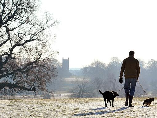 Тело было обнаружено 1 января, одним из местных жителей. Фото: sandringhamestate.co.uk