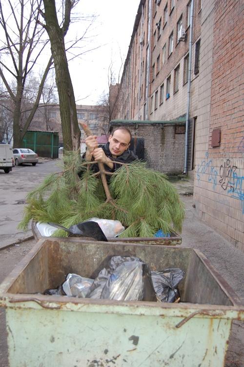 Уже сегодня возле мусорных баков появятся выброшенные деревья.