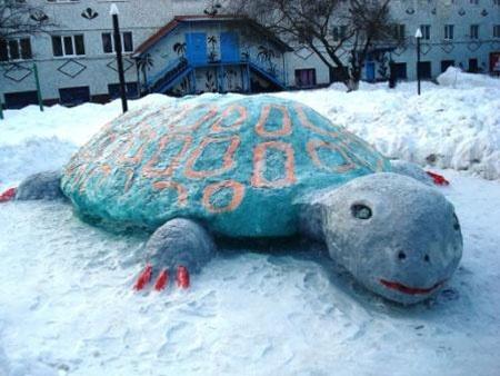 Во дворе колонии теперь живет  огромная черепаха. Фото: Управление Государственной пенитенциарной службы