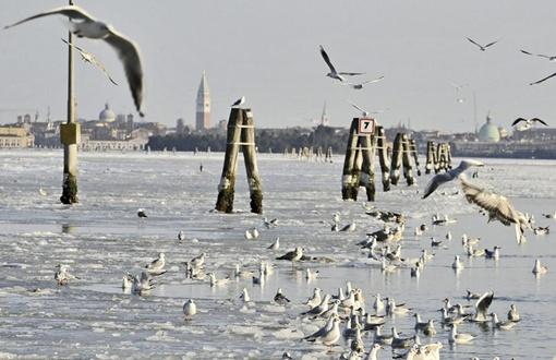 Власти Венеции уже попросили владельцев частных лодок не ездить без необходимости. ФОТО: bigpicture.ru