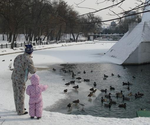 Взрослые и дети кормят птиц в парке Глобы