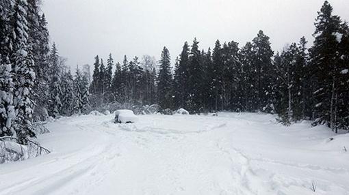 Даже в таких условиях можно жить. Фото sverigesradio.se