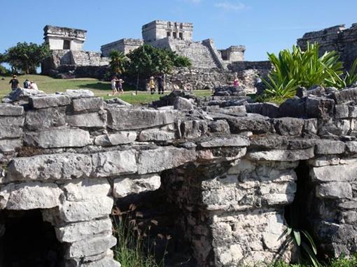 Майя могли стать жертвой засухи, из-за которой большая часть населения вымерла. Фото: Global Look Press