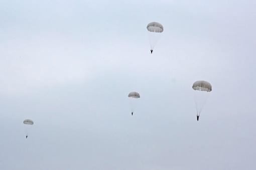 Хорошо летят! Фото Руслана Семенюка