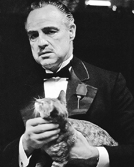 Роль Дона Корлеоне стала одной из лучших в блестящей карьере Марлона Брандо. Кадр из фильма.