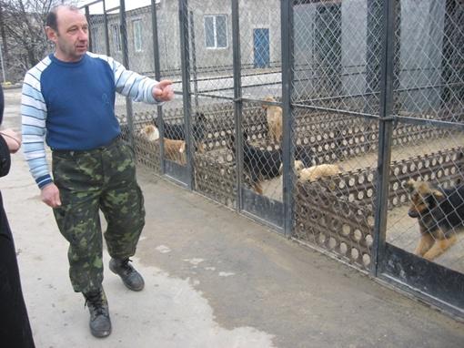 Сотрудник единственного приюта для собак под Симферополем показывает в каких условиях содержатся животные