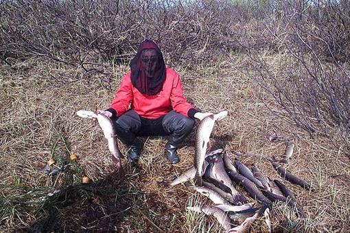 Дмитрий Григорьев на этом снимке спасается от комаров под специальной сеткой. Знает человек средства от разных напастей! Фото с сайта odnoklassniki.ru