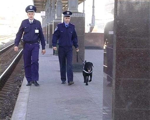 Несуществующую бомбу искали полтора часа. Фото пресс-службы Управления МВД Украины на Южной железной дороге.