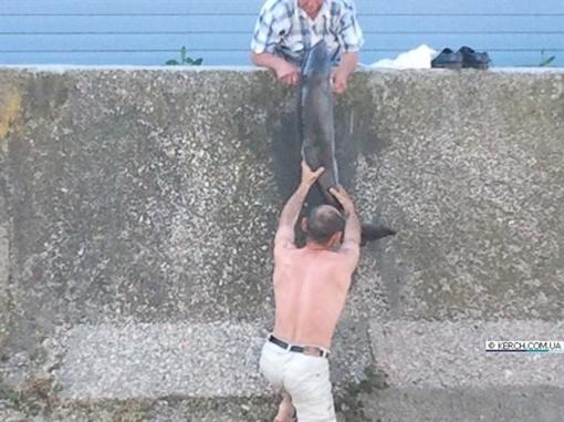 На помощь пришел еще один прохожий. Фото: kerch.com.ua