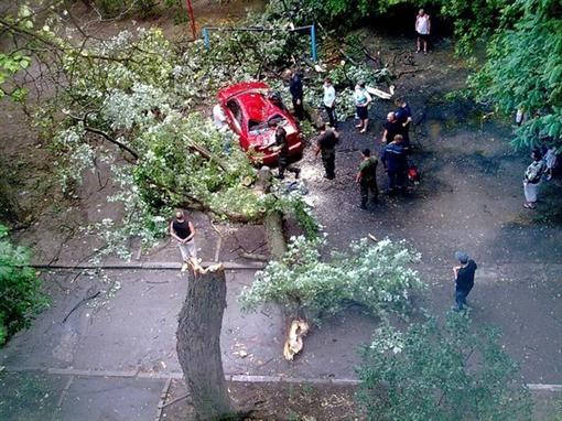 В Запорожье шквальный ветер обрывал линии электропередачи, ломал ветви на деревьях, срывал кровли.