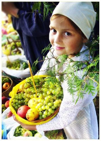Яблоки улучшают пищеварение и микрофлору кишечника.