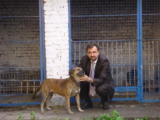 Роман Гарматий помогает животным не только по велению сердца, но и по долгу службы.