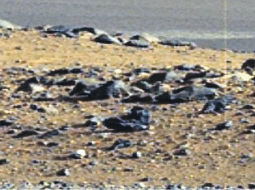 По оценкам экспертов, ботинок марсианина (на снимке внизу) был примерно 43-го земного размера. Фото NASA.