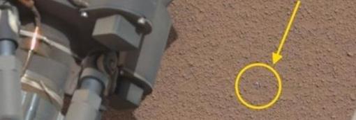 Объект был обнаружен рядом с марсоходом Фото: NASA/JPL-Caltech