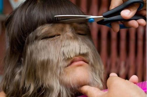 Челочку надо подстричь.. Фото с сайта kp.ru